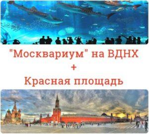 Москвариум + Красная Площадь