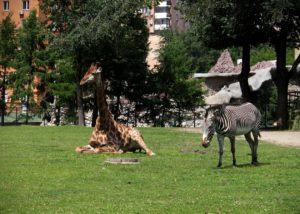 zoopark-msk